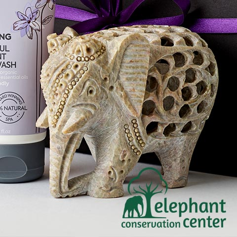 Hand Carved Elephant Ornament